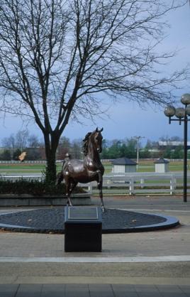 Kentucky Horse Park nabij Lexington