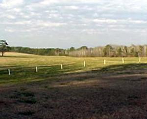 Bij Horshoe Bend