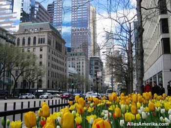 Deel van de Magnificent Mile