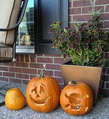 Halloweenpompoen