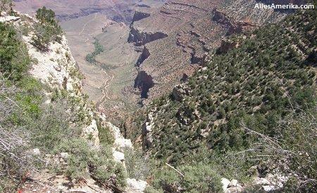 Uitzicht van de Bright Angel Trail
