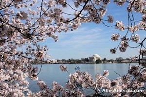 Lente in DC
