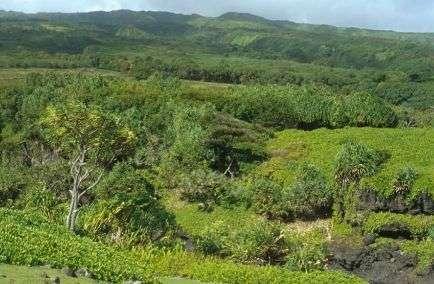 National Park Haleakala in Hawaii