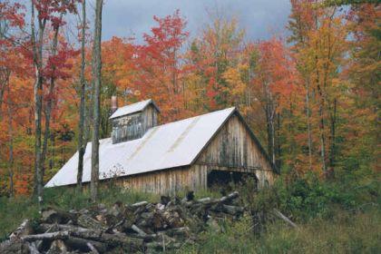 Herfst in Amerika