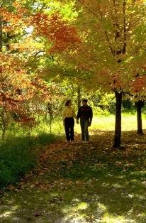 Herfst in Minnesota