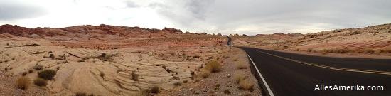 Weg in de woestijn van de VS